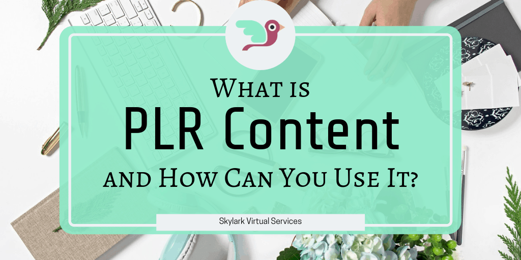 What is PLR Content and How Can You Use It?